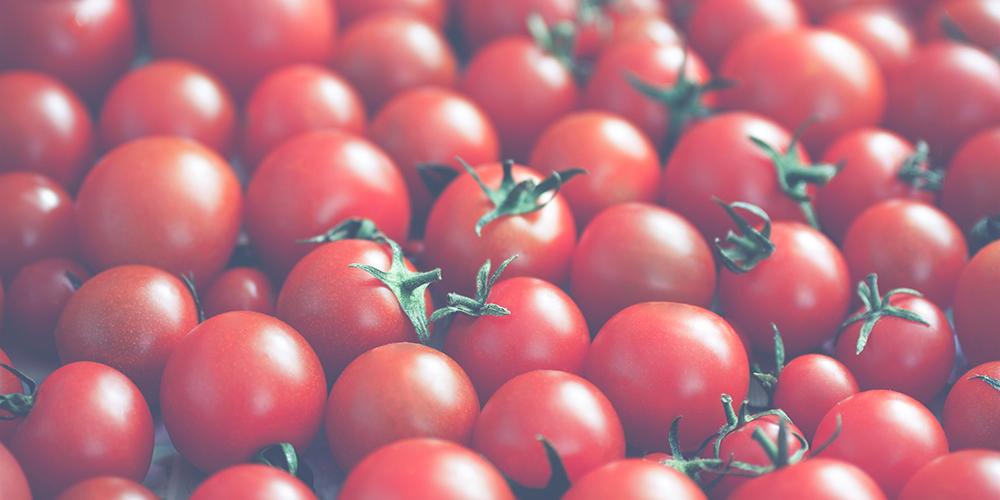 tomaten-verliezen-hun-smaak-in-de-koelkast